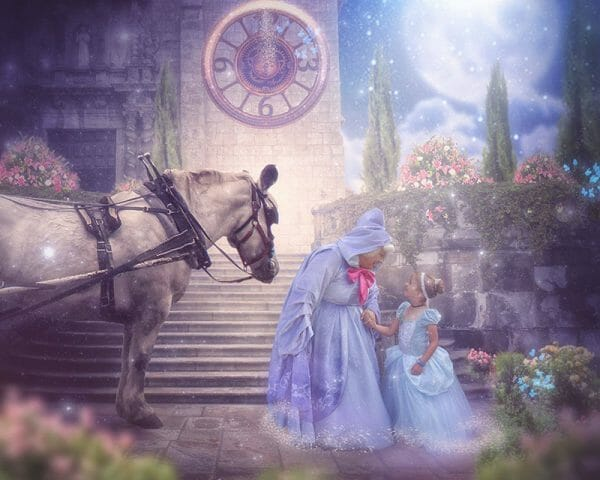 Your Fairy Godmother princess and horse