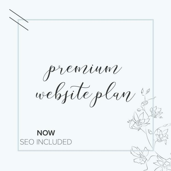 premium website plan with included search engine optimization